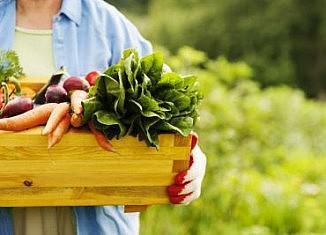 5 важных продуктов, полезных при диабете