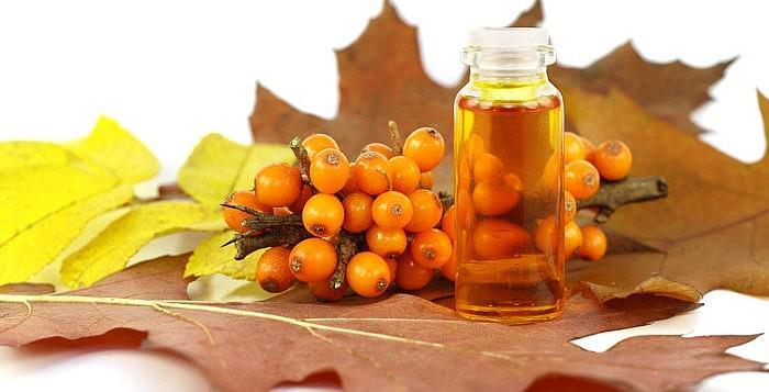 Облепиховое масло. Питание и увлажнение волос